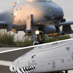 Freewing A-10 Thunderbolt II Super Scale Twin 80mm EDF Jet PNP