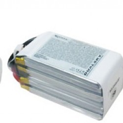Dualsky XP12004GT-S Lipo Battery x2
