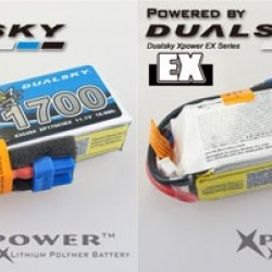Dualsky XP17004EX Lipo Battery x2