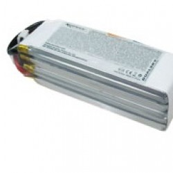 Dualsky XP17504GT-S Lipo Battery x2