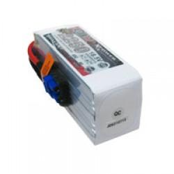 Dualsky XP22505GT-S Lipo Battery