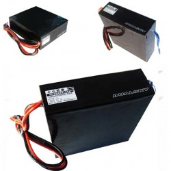 Dualsky XP350007HED Battery for Paraglider