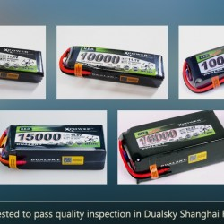 Dualsky XP1500042HED Lipo Battery
