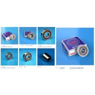 DLE Engines Bearings