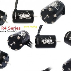 Dualsky R4 Series Brushless Motor x2