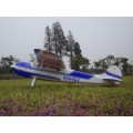 40CC-60CC RC Gas Plane